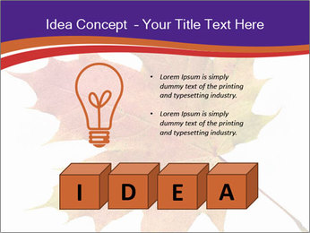 0000096608 PowerPoint Template - Slide 80