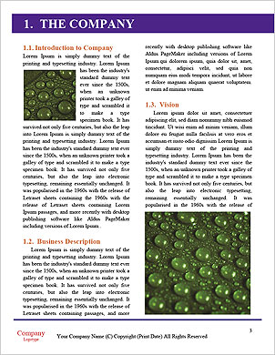 0000096608 Word Template - Page 3