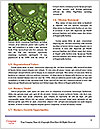 0000096608 Word Template - Page 4
