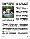 0000096609 Word Template - Page 4