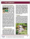 0000096610 Word Template - Page 3