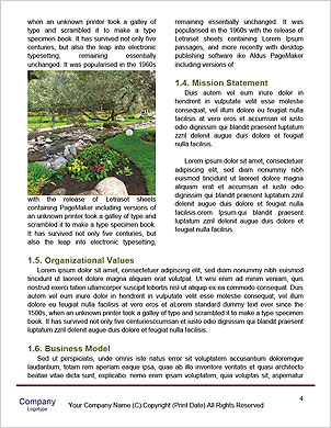 0000096610 Word Template - Page 4