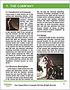0000096612 Word Template - Page 3