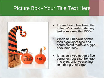 0000096617 PowerPoint Template - Slide 13