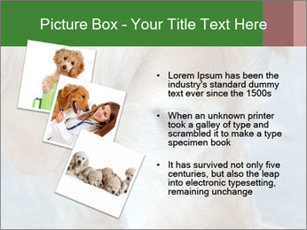 0000096617 PowerPoint Template - Slide 17