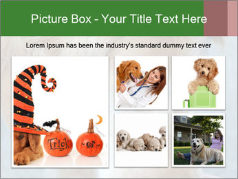 0000096617 PowerPoint Template - Slide 19
