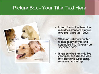 0000096617 PowerPoint Template - Slide 20