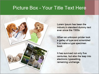 0000096617 PowerPoint Template - Slide 23