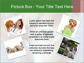 0000096617 PowerPoint Template - Slide 24