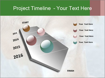 0000096617 PowerPoint Template - Slide 26