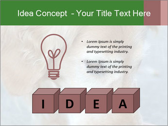 0000096617 PowerPoint Template - Slide 80