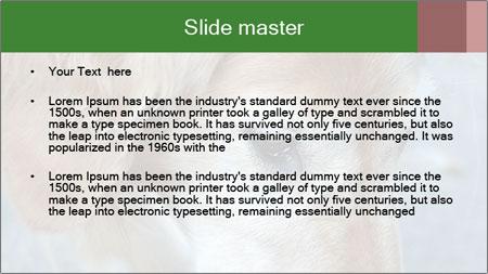0000096617 PowerPoint Template - Slide 2