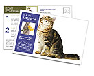 0000096620 Postcard Templates