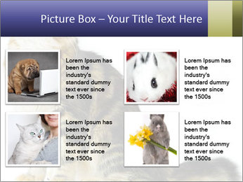 0000096620 PowerPoint Template - Slide 14