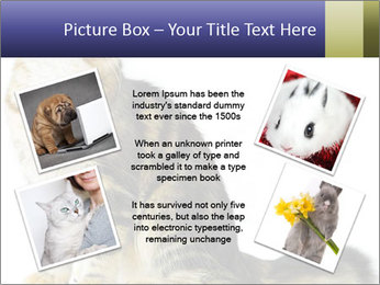 0000096620 PowerPoint Template - Slide 24