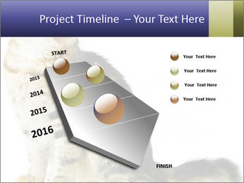 0000096620 PowerPoint Template - Slide 26