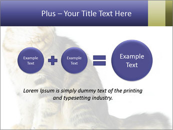 0000096620 PowerPoint Template - Slide 75