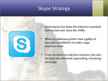 0000096620 PowerPoint Template - Slide 8