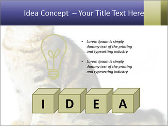 0000096620 PowerPoint Template - Slide 80