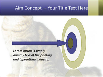 0000096620 PowerPoint Template - Slide 83