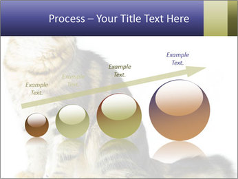 0000096620 PowerPoint Template - Slide 87