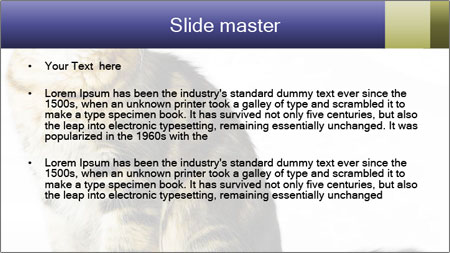 0000096620 PowerPoint Template - Slide 2