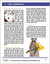 0000096620 Word Template - Page 3