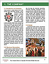 0000096624 Word Template - Page 3