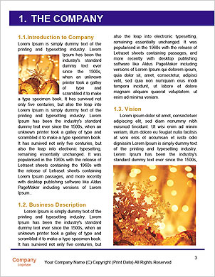 0000096625 Word Template - Page 3