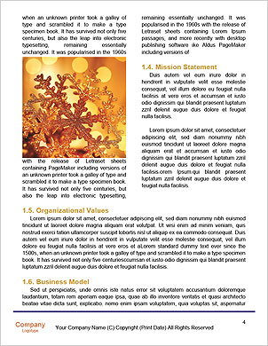 0000096625 Word Template - Page 4