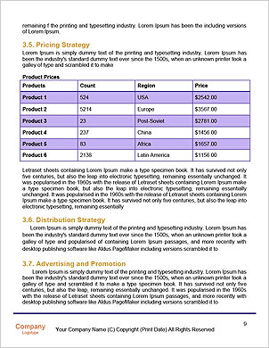 0000096625 Word Template - Page 9