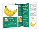 0000096626 Brochure Templates