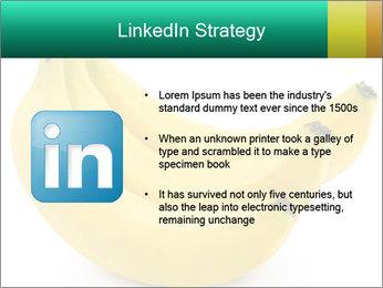 0000096626 PowerPoint Template - Slide 12