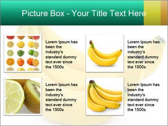 0000096626 PowerPoint Template - Slide 14