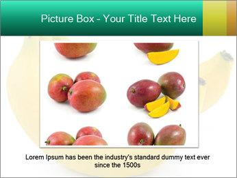 0000096626 PowerPoint Template - Slide 15