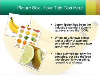 0000096626 PowerPoint Template - Slide 17