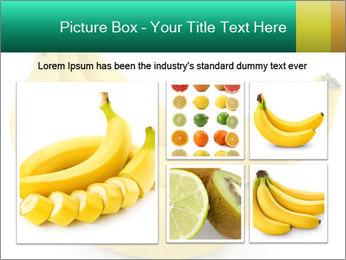 0000096626 PowerPoint Template - Slide 19