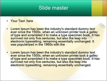 0000096626 PowerPoint Template - Slide 2