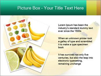 0000096626 PowerPoint Template - Slide 23