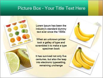 0000096626 PowerPoint Template - Slide 24
