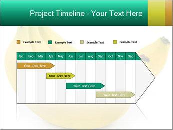 0000096626 PowerPoint Template - Slide 25
