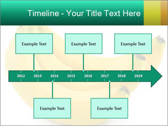 0000096626 PowerPoint Template - Slide 28