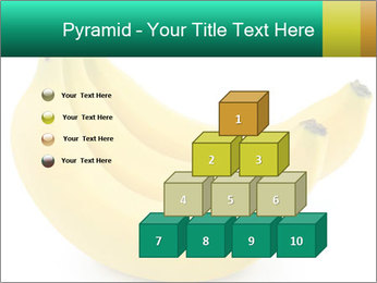 0000096626 PowerPoint Template - Slide 31