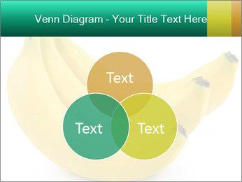 0000096626 PowerPoint Template - Slide 33