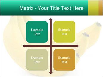 0000096626 PowerPoint Template - Slide 37