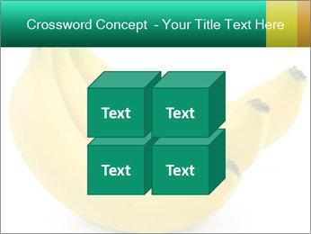 0000096626 PowerPoint Template - Slide 39