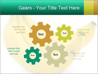 0000096626 PowerPoint Template - Slide 47