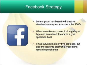 0000096626 PowerPoint Template - Slide 6