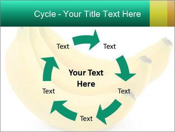 0000096626 PowerPoint Template - Slide 62