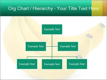 0000096626 PowerPoint Template - Slide 66